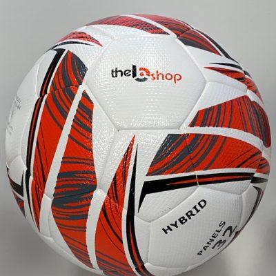 pallone (1)